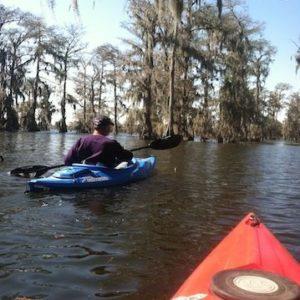 Champagnes Cajun Kayak Swamp Tours 5