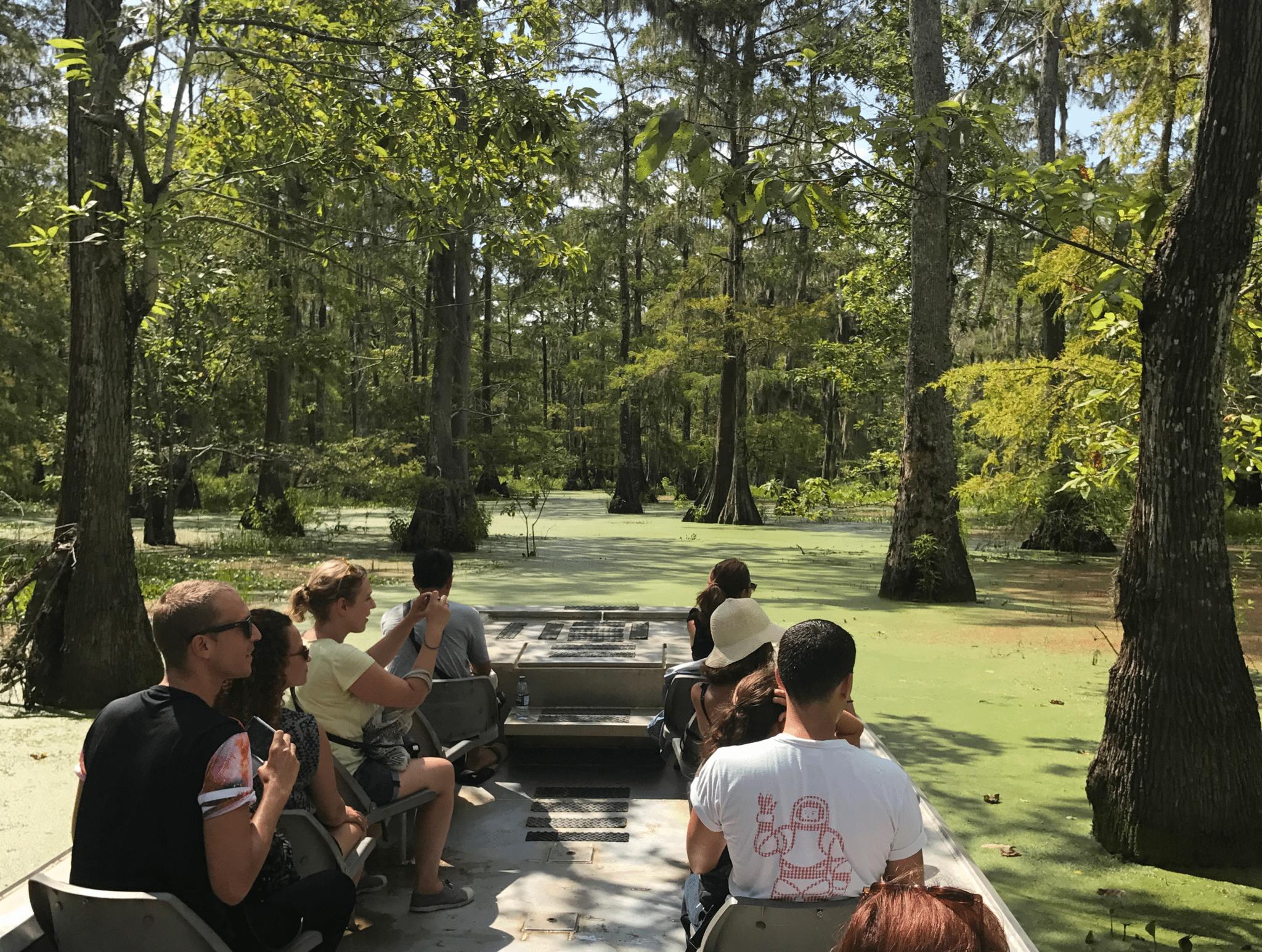 swamp-tour1