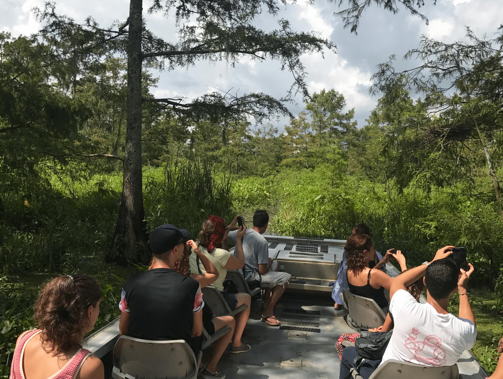 swamp-tours2